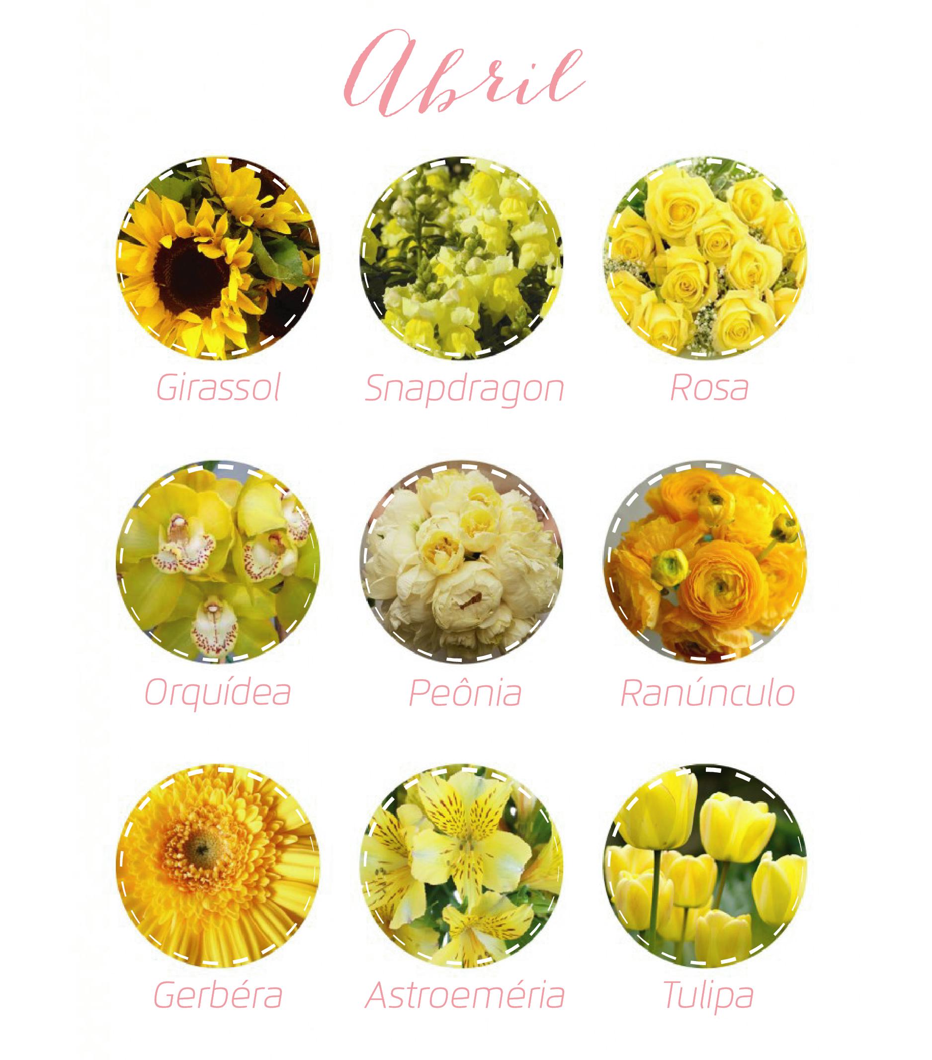 Flores Abril