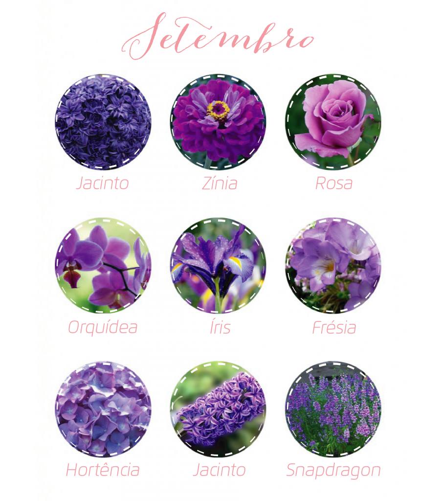 Flores Setembro