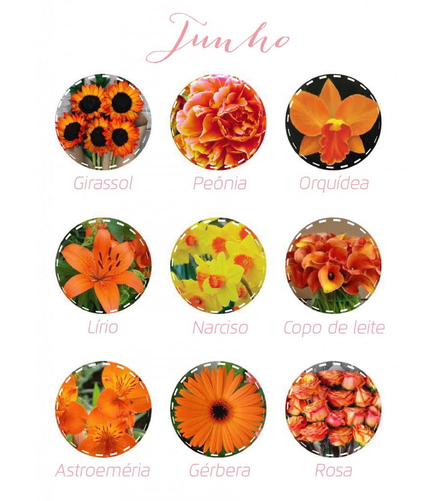Flores junho