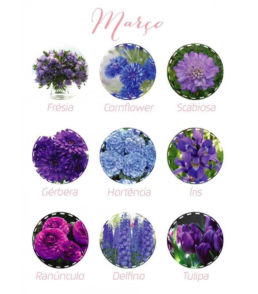 Flores março